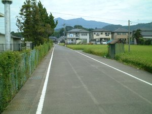 Rinrin029